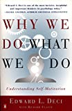 Flaste, Richard: Why We Do What We Do: Understanding Self-Motivation
