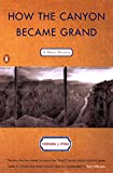Pyne, Stephen J.: How the Canyon Became Grand: A Short History