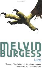 Kite by Melvin Burgess