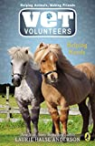 Anderson, Laurie Halse: Vet Volunteers 15 Helping Hands