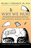 Vertosick, Frank T.: Why We Hurt: The Natural History of Pain