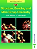 Jarvis, Alan: Nelson Advanced Science: Structure, Bonding and Main Group Chemistry (Nelson Advanced Science: Chemistry)