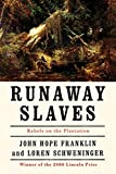 Franklin, John Hope: Runaway Slaves: Rebels on the Plantation