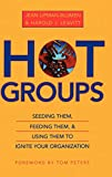 Lipman-Blumen, Jean: Hot Groups: Seeding Them, Feeding Them, and Using Them to Ignite Your Organization