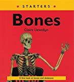 Llewellyn, Claire: Read Write Inc. Comprehension: Module 9: Children's Books: Bones Pack of 5 Books
