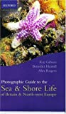 Gibson, Ray: Photographic Guide to Sea and Shore Life of Britain and North-west Europe