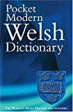 King, Gareth: The Pocket Modern Welsh Dictionary: A Guide to the Living Language