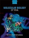 Elliott, David: Molecular Biology of RNA
