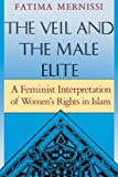 Mernissi, Fatima: The Veil and the Male Elite: A Feminist Interpretation of Women's Rights in Islam