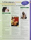 Berk, Laura E.: Milestones for Infants, Children, and Adolescents