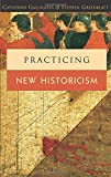 Gallagher, Catherine: Practicing New Historicism