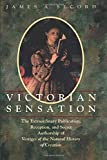 Secord, James A.: Victorian Sensation: The Extraordinary Publication, Reception, and Secret Authorship of Vestiges of the Natural History of Creation