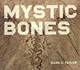 Taylor, Mark C.: Mystic Bones