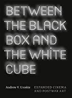 Between the Black Box and the White Cube:…