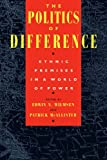 The Politics of Difference   Ethnic Premises in a World of Power