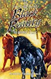 Sewell, Anna: Black Beauty: An Animal Classic (Fast Track Classics)