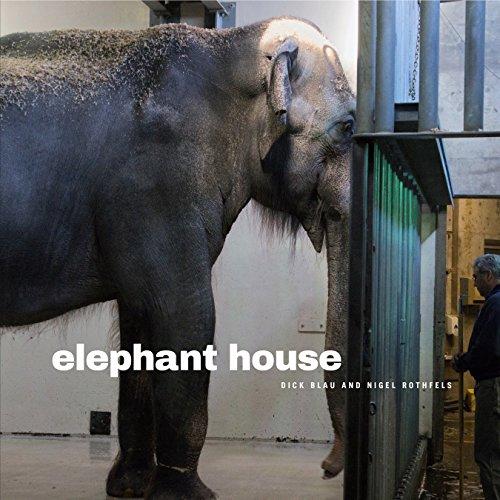 elephant-house-animalibus