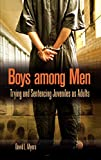 Myers, David L: Boys Among Men: Trying And Sentencing Juveniles As Adults
