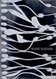 Bill Arning: Kunie Sugiura: Dark Matters/Light Affairs