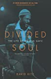 Ritz, David: Divided Soul: The Life of Marvin Gaye