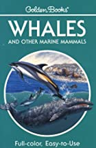 Whales by George S. Fichter
