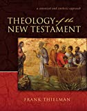 Thielman, Frank S.: Theology Of The New Testament: A Canonical And Synthetic Approach