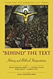 Healy, Mary: Behind the Text: History and Biblical Interpretation