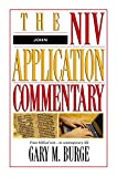 Burge, Gary M.: John: The Niv Application Commentry  From Biblical Text ... to Contemporary Life