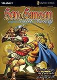 Martin, Gary: The Sword of Revenge (Z Graphic Novels / Son of Samson)