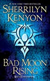 Kenyon, Sherrilyn: Bad Moon Rising (A Kark Hunter Novel)