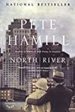 Hamill, Pete: North River: A Novel