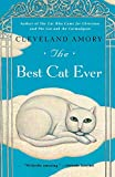 Amory, Cleveland: The Best Cat Ever