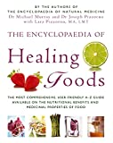 Murray, Michael: Encyclopedia of Healing Foods