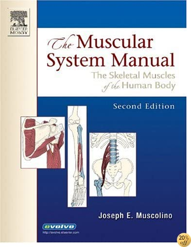 The Muscular System Manual: The Skeletal Muscles of the Human Body, 2nd Edition