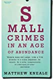 Kneale, Matthew: Small Crimes in an Age of Abundance