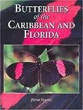 Stiling, Peter D.: Butterflies of the Caribbean