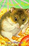 LUCY DANIELS: Animal Ark Pets 4: Hamster Hotel