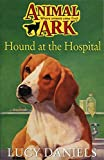 Lucy Daniels: Animal Ark 35: Hound at the Hospital