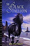 Farley, Walter: The Black Stallion (Hodder Modern Classic)