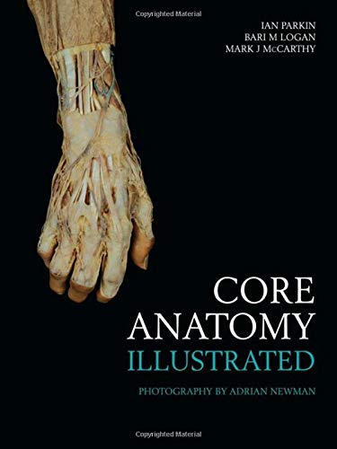 core-anatomy-illustrated