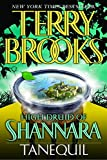 Brooks, Terry: High Druid Of Shannara: Tanequil