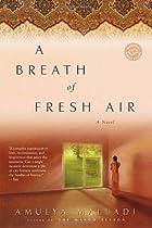 A Breath of Fresh Air by Amulya Malladi