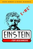 Schwartz, Joseph: Einstein for Beginners