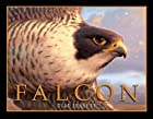 Falcon by Tim Jessell