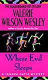 Wesley, Valerie Wilson: Where Evil Sleeps