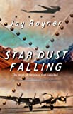 Rayner, Jay: Star Dust Falling: The Story of the Plane That Vanished