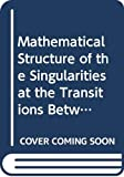 Shirer, Hampton N.: Mathematical Structure of the Singularities at the Transitions Between Steady States in Hydrodynamic Systems (Lecture Notes in Physics)