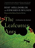 Hölldobler, Bert: The Leafcutter Ants: Civilization by Instinct