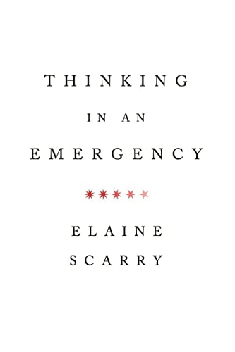 thinking-in-an-emergency-norton-global-ethics-series