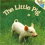 Dunn, Judy: The Little Pig (Pictureback(R))